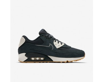 Chaussure Nike Air Max 90 Premium Pour Homme Lifestyle Marine Arsenal/Voile/Jaune Gomme/Marine Arsenal_NO. 700155-403